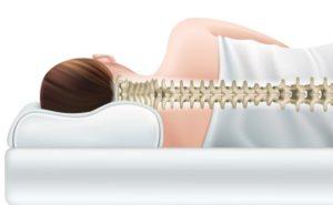 coussin anatomique